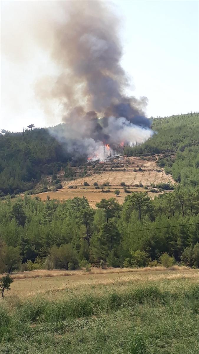 Aydın'da orman yangınına müdahale ediliyor 20200829 2 44107028 57754758 Web