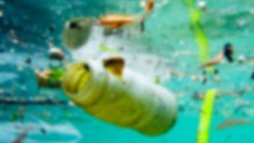 Kuşadası'nda denize çöp atan kişi gözaltına alındı kusadasinda denize cop atan kisi goz altina alindi