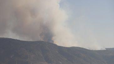 Denizli'de orman yangını 20200903 2 44183955 57879993 Web