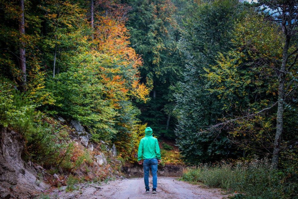 Sis bulutlarıyla kaplı Domaniç Dağları'nda sonbaharın ilk renkleri 20200907 2 44233399 57958376 Web