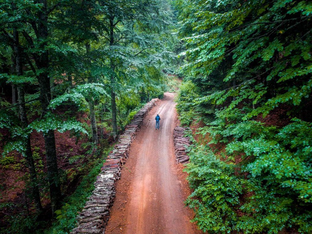 Sis bulutlarıyla kaplı Domaniç Dağları'nda sonbaharın ilk renkleri 20200907 2 44233399 57958379 Web