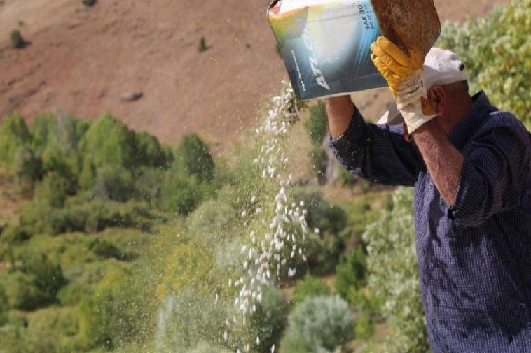 Ata tohumlarıyla üretilen kuru fasulye, rüzgar çağrılarak ayıklanıyor ata tohumlariyla uretilen kuru fasulye ruzgar cagrilarak ayiklaniyor KODwmKin