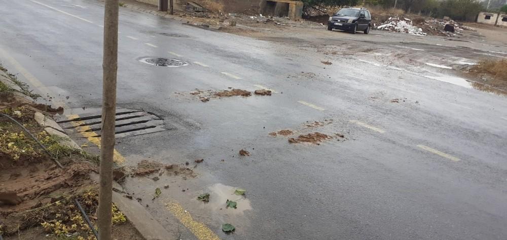 Efeler Belediyesi yeşil alana zarar veren çalışmayı durdurdu efeler belediyesi yesil alana zarar veren calismayi durdurdu 2 PDyn2PUi