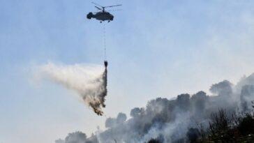 Aydın'da 2020 yılında 68 orman yangını meydana geldi aydinda 2020 yilinda 68 orman yangini meydana geldi LjbBIHD5